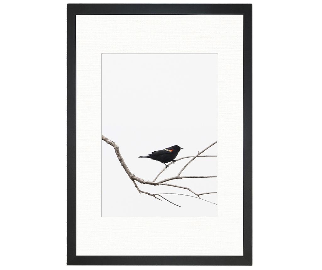Tablou Bird on the Branch 24x29 cm