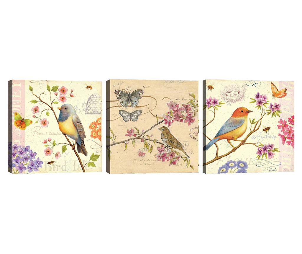 Set 3 tablouri Birds 30x30 cm